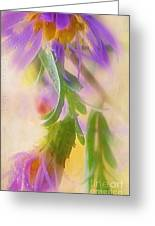 Impression Of Asters Greeting Card by Judi Bagwell