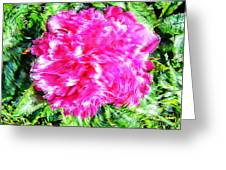 Impressionistic  Peony Greeting Card by Barbara Griffin