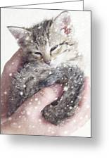 In Safe Hands II Greeting Card by Amy Tyler