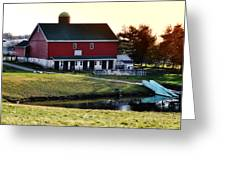 In The Barn Yard Greeting Card by Bill Cannon