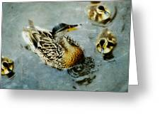 In the pond Greeting Card by Marlene Ford