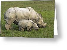 Indian Rhinoceroses Greeting Card by Tony Camacho