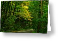 Indiana Road Greeting Card by Joyce Kimble Smith