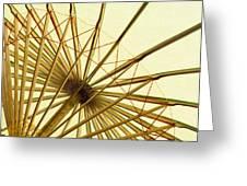 Inside of Parasol Greeting Card by sam bloomberg-rissman