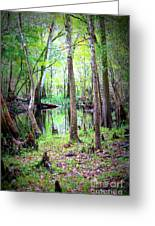 Into The Swamp Greeting Card by Carol Groenen