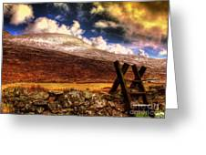 Into The Wild Greeting Card by Kim Shatwell-Irishphotographer