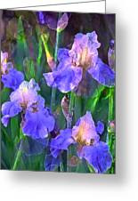 Iris 51 Greeting Card by Pamela Cooper