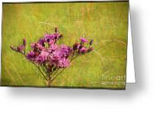 Ironweed In Autumn Greeting Card by Judi Bagwell
