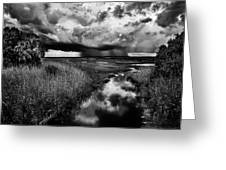 Isolated Shower - Bw Greeting Card by Christopher Holmes