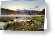 It Rises Greeting Card by Tyler Porter