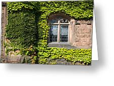 Ivy League Greeting Card by John Greim