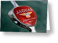 Jaguar Winner Le Mans Greeting Card by Kristan Barnes
