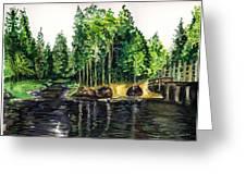 Jersey Pines Greeting Card by Clara Sue Beym