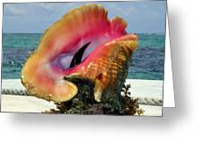 Jewel Of The Deep Greeting Card by Karen Wiles