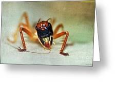 Jiminy Cricket 2 Greeting Card by Kaye Menner