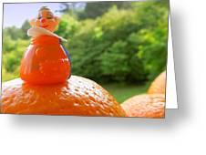 Juggling Oranges Greeting Card by Renee Trenholm