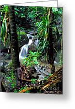 Jungle Waterfall Greeting Card by Thomas R Fletcher