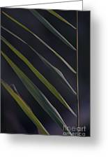Just Grass Greeting Card by Heiko Koehrer-Wagner