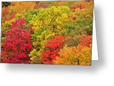 Kaleidoscope Greeting Card by Jeff Moose