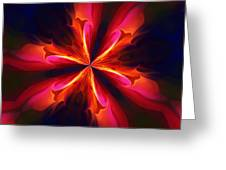 Kaliedoscope Flower 121011 Greeting Card by David Lane