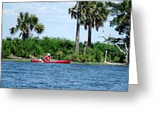 Kayaking Along The Gulf Coast Fl. Greeting Card by Marilyn Holkham