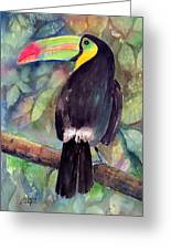 Keel-billed Toucan Greeting Card by Arline Wagner