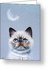 Kitten And Feather  Greeting Card by Elena Kolotusha