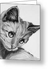 Kitten Cameo Greeting Card by Susan A Becker