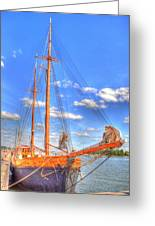 Know The Ropes Greeting Card by Barry R Jones Jr