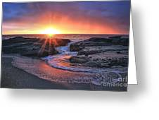 Laguna Beach Sunset Greeting Card by Elena Northroup