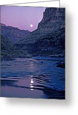 Lake Light On Colorado River,grand Greeting Card by David Edwards