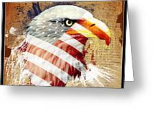 Land Of The Free Greeting Card by Robert  Adelman