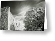 Landscape In Infra Red Greeting Card by Odon Czintos