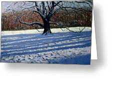 Large Tree Greeting Card by Andrew Macara
