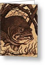 Largemouth Bass Greeting Card by Kathleen Kelly Thompson