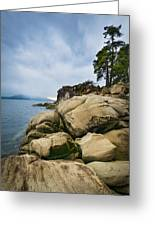 Larrabee State Park Greeting Card by Greg Vaughn
