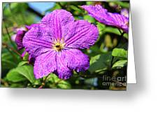 Last Summer Bloom Greeting Card by Mariola Bitner