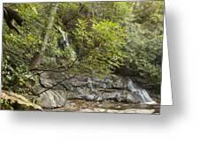 Laurel Falls 6226 Greeting Card by Michael Peychich