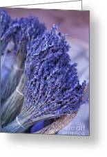 Lavender Bunches In Provence Greeting Card by Paul Grand