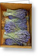 Lavender Bundles Greeting Card by Lainie Wrightson