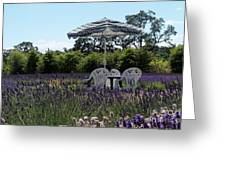 Lavender Tea Time Greeting Card by Laurel Thomson