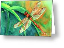 Lazy Days Greeting Card by Tracy L Teeter