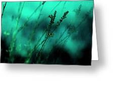 Le Jardin Greeting Card by Bonnie Bruno