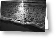 Leading Edge II Greeting Card by Steven Ainsworth