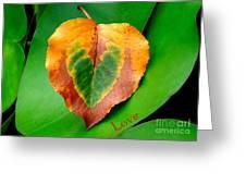 Leaf Leaf Heart Love Greeting Card by Renee Trenholm