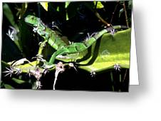Leapin Lizards Greeting Card by Karen Wiles