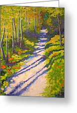 Lena Lake Trail IIi Greeting Card by Mary McInnis