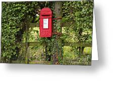 Letterbox In A Hedge Greeting Card by Louise Heusinkveld