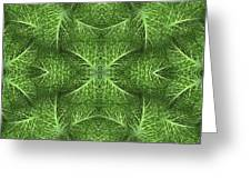 Lettuce Live Green  Greeting Card by Sue Duda