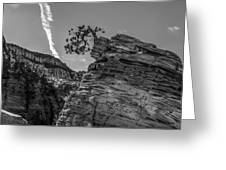 Life On The Edge Greeting Card by George Buxbaum